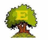 """Tudástár: """"Zöld"""" energiaforrások"""