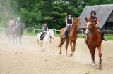 Hogyan mozognak a lovak?