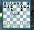 Sakk-trükkök
