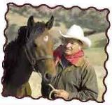 Értsd meg a lovak nyelvét