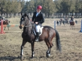 Leg..., leg..., leg... - A lovak világában
